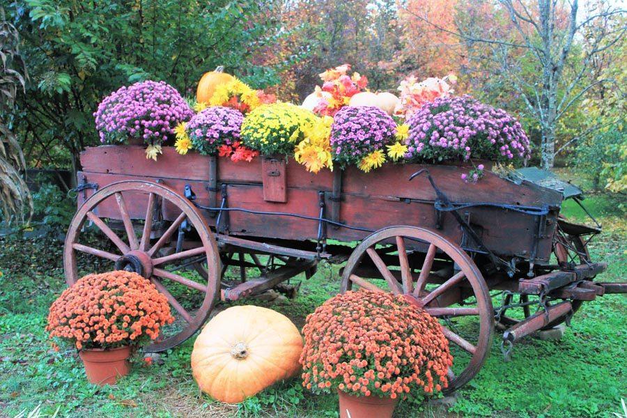 fall-wagon