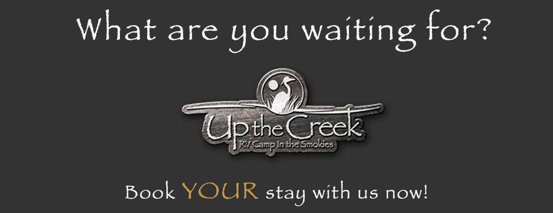Up The Creek RV Camp Banner