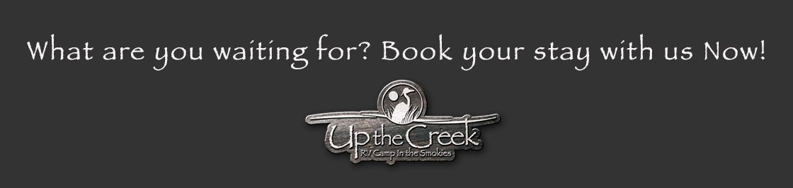 CTA Banner For Up The Creek