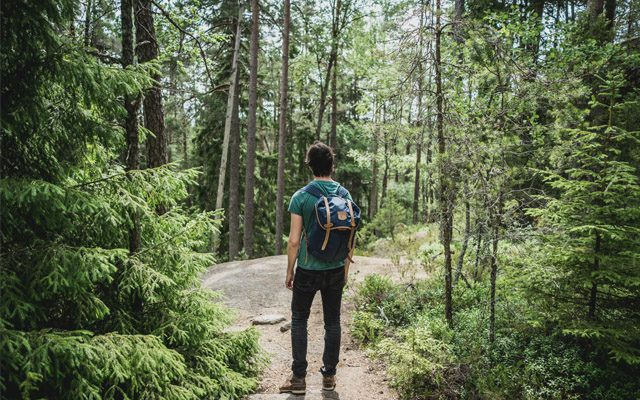 Man Wearing A Backpack Hiking The Great Smoky Mountains