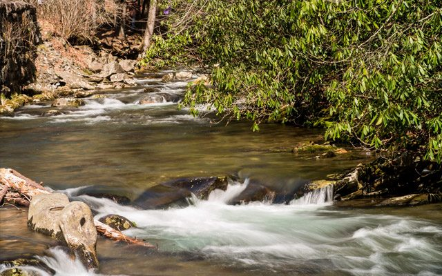 A Creek In Smoky Mtn National Park